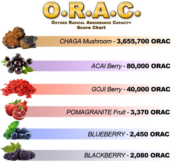 ORAC Werte von Chaga, Acai, Goji