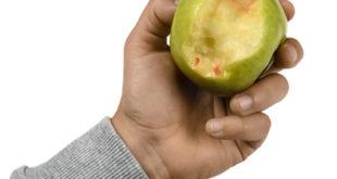 Zahnfleischbluten Apfel Abdruck